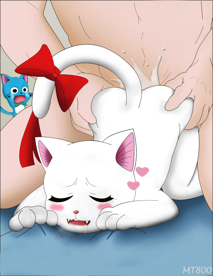 cat fairy tail the happy Zelda breath of the wild nsfw